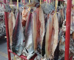 步凤咸猪头肉和咸鱼销售